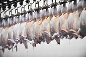 Food industry detail with poultry meat processing