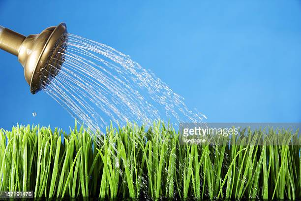 Pouring Grass