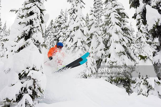 Powder skiing in the trees