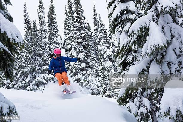Ski fahren im Pulverschnee in baumbestandenen