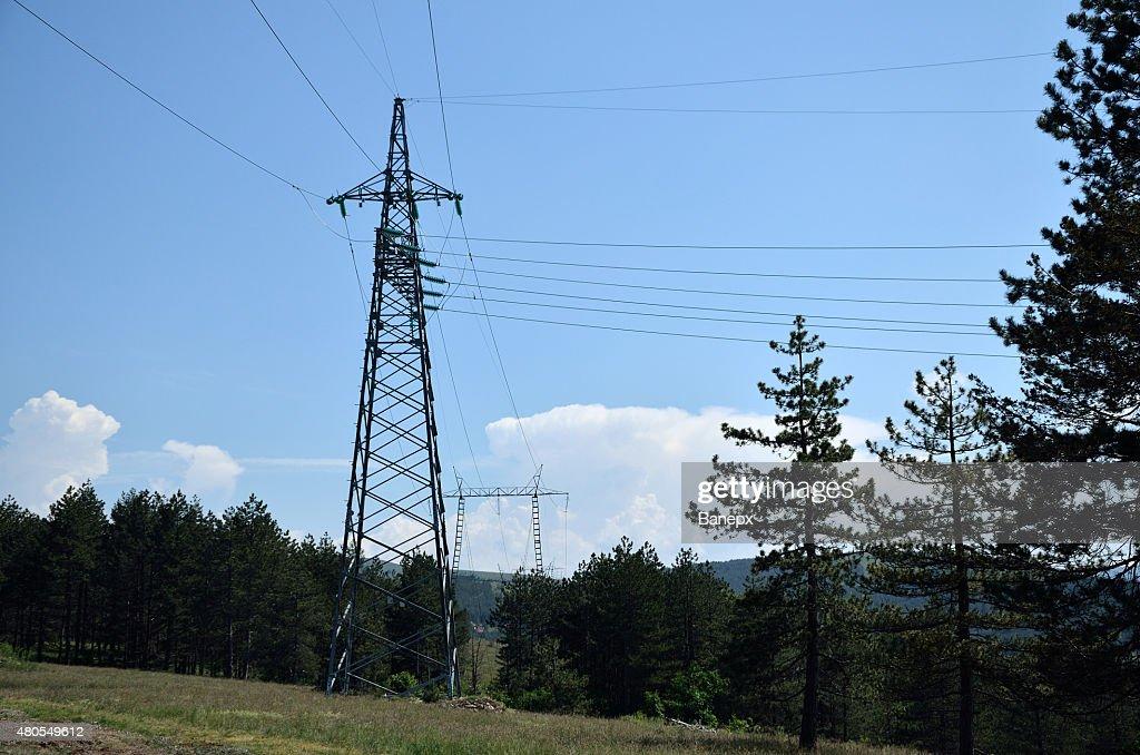 Potencia lineand pines : Foto de stock
