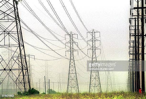 Power lines stream from Reliant Energy's Etiwanda Plant 17 May 2001 in Ontario CA California Governor Gray Davis is threatening to take over...