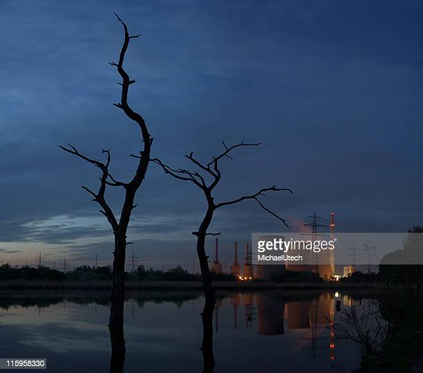 Centrale elettrica con alberi morti