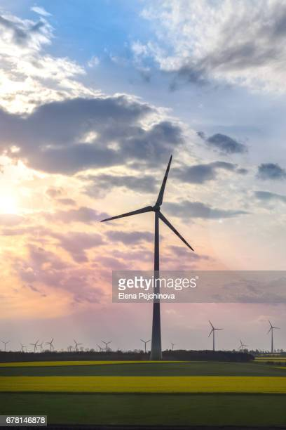 Power turbines at sunset
