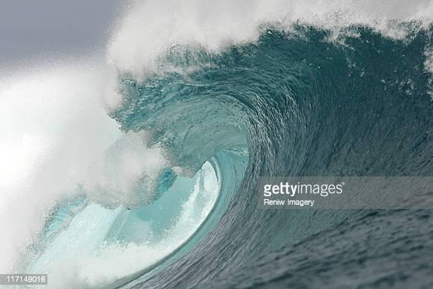 Potente ocean wave
