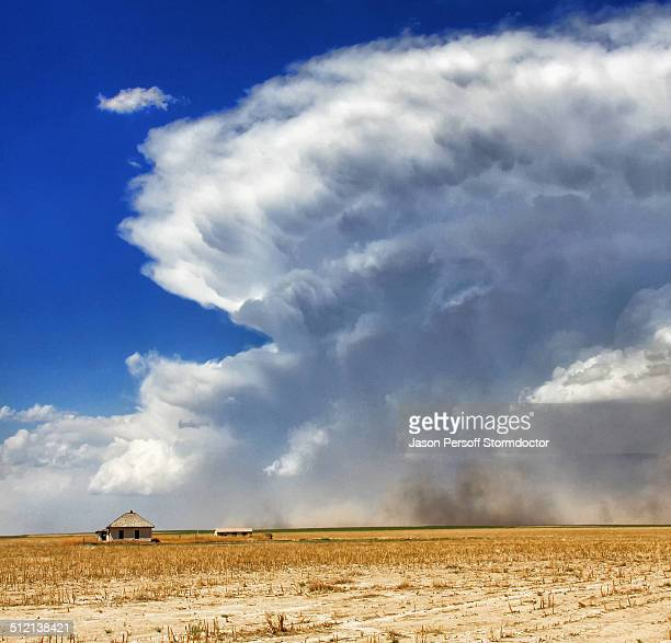 A powerful supercell with strong rear flank downdraft wrapping from left to right in this image kicks up dust and gustnadoes near abandoned farmhouse, Sheridan Lake, Colorado, USA