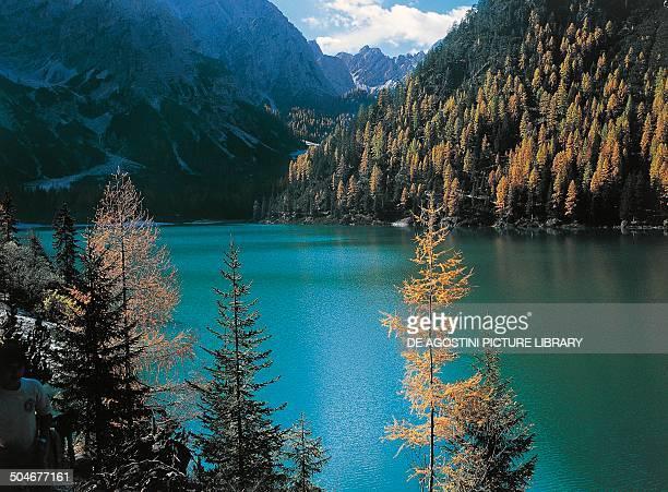 Pragser Wildsee or Lake Braies Dolomites TrentinoAlto Adige Italy