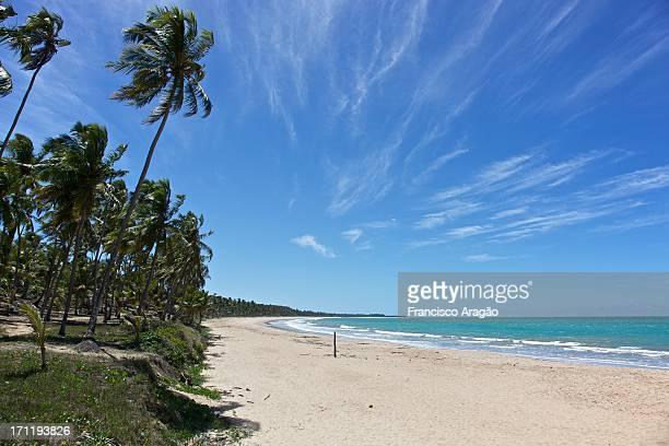 Praia da Sereia - Maceió, Alagoas