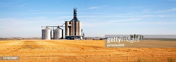 Prairie Elevator And Grain Bin