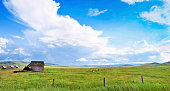 Beautiful Panorama of prairie landscape with old barn in front and blue sky and clouds in Alberta, Canada.