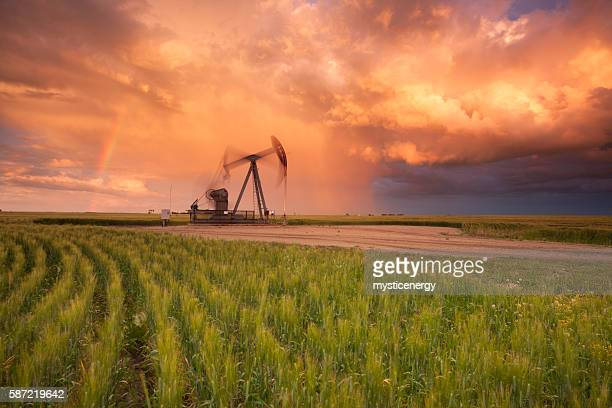 Prairie Oil Saskatchewan