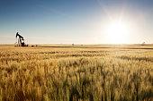 Just out side of Weyburn, Saskatchewan. Oil pumps working. Image taken from a tripod.