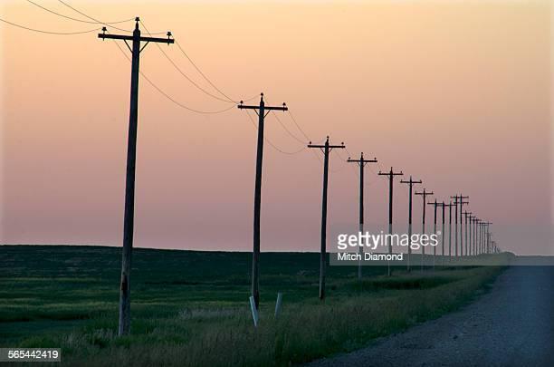 Prairie Telephone poles along road