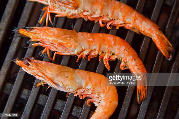 Prawns on a barbie