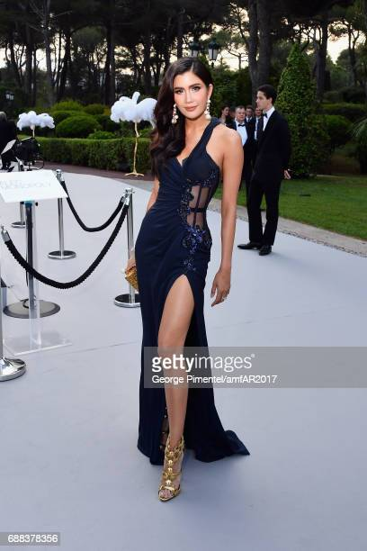Praya Lundberg arrives at the amfAR Gala Cannes 2017 at Hotel du CapEdenRoc on May 25 2017 in Cap d'Antibes France