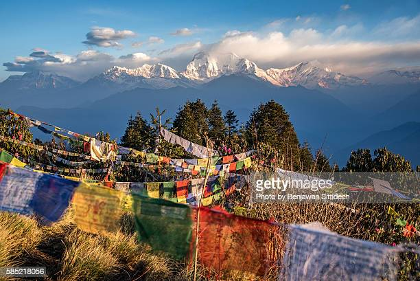 Prayer flags and Dhaulagiri mountain range