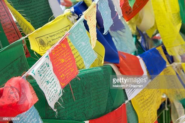 Prayer Flags - Dharamsala, India