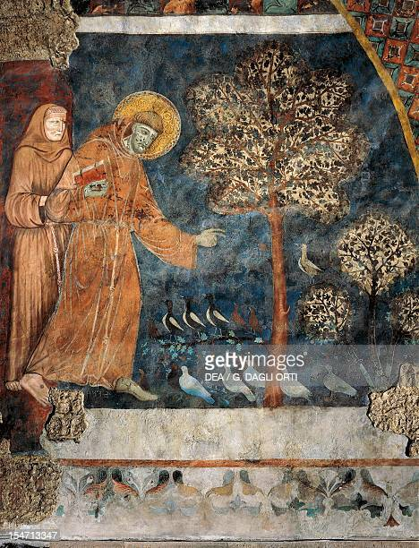 Preaching to the Birds fresco by the Master of St Francis Lower Church Papal Basilica of St Francis of Assisi Assisi Umbria Italy 13th century