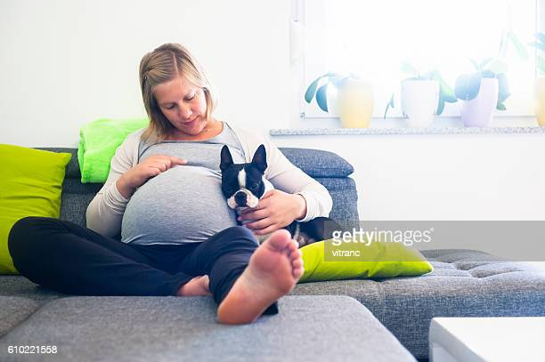 Pregnant woman sitting on sofa with her Boston terrier
