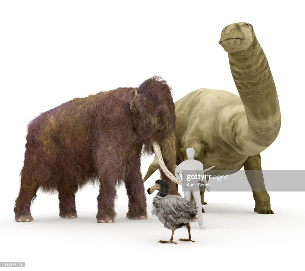 Image of: Glad Prehistoric Extinct Animals To Human Size Comparison Stock Photo Thinkstockphotosin Prehistoric Extinct Animals To Human Size Comparison Stock Photo