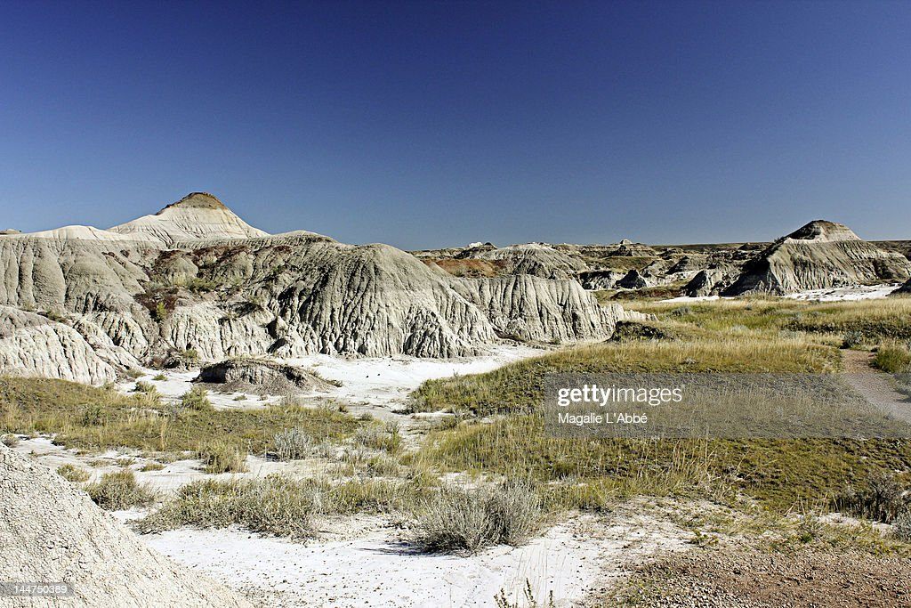 Prehistoric landscape : Stock Photo