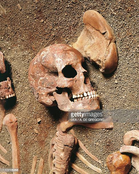 Prehistory Paleolithic Italy Liguria Region Caves of the Balzi Rossi Barma Grande Cave Triple burial CroMagnon type skeleton detail