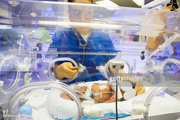 Premature Baby in Incubator is Being Examined
