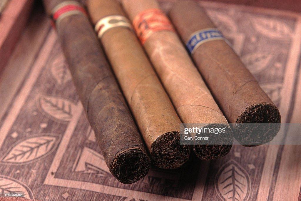 Premium hand rolled cigars on box : Stock Photo