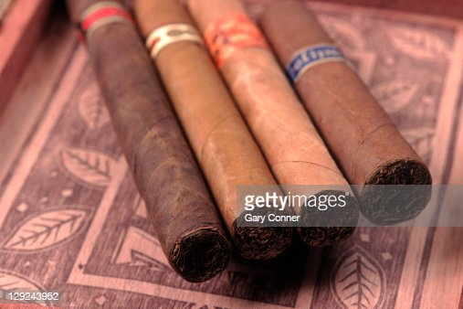 Premium hand rolled cigars on box : Stock Photo