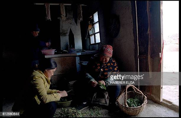 Preparation for lunch at the home of Cai Xingju's parents Despite her daughter's fear she advised her to follow her young husband Ding Zhifa to...