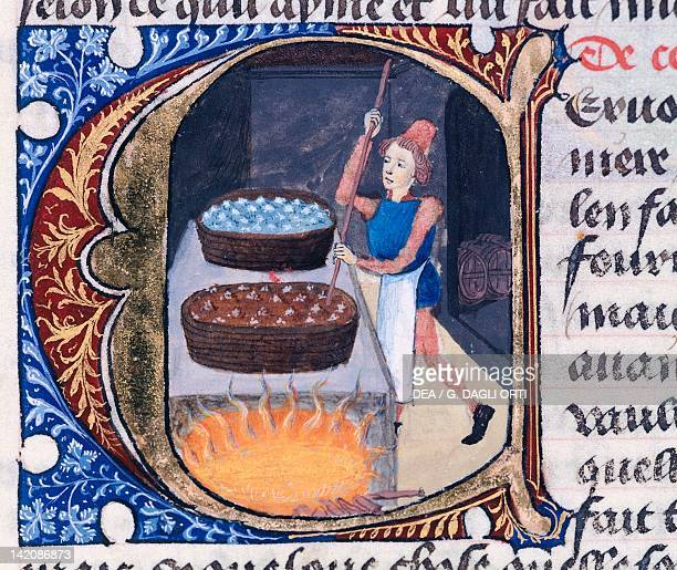 Preparing ale a type of beer made from barley and other cereals miniature from the Treaty of Medicine by Aldebrande of Florence manuscript Italy