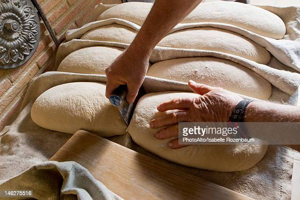 Preparing fresh bread dough to be baked