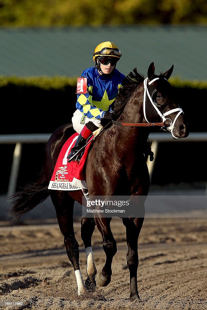 Pre-race favorite Shanghai Bobby #1, riden by <a gi-track='captionPersonalityLinkClicked' href=/galleries/search?phrase=Rosie+Napravnik&family=editorial&specificpeople=7735511 ng-click='$event.stopPropagation()'>Rosie Napravnik</a>, is brought to the starting gate during the Florida Derby at Gulfstream Park on March 30, 2013 in Hallandale, Florida.
