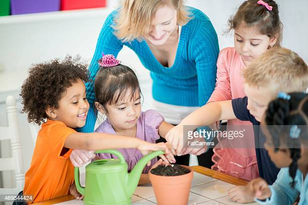 Preschoolers Learning to Plant Seeds