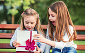 Cute little girl surprised her younger sister with a birthday present. Family concept