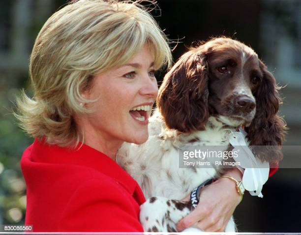 TV Presenter Anthea Turner with Hattie a springer spaniel from Macclesfield chosen by a panel of 5 judges as the 1998 Eukanuba Rescue Dog of the Year...