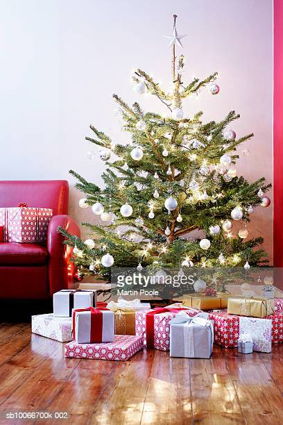 Presents surrounding illuminated Christmas tree in living room