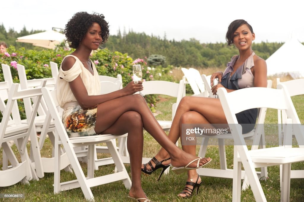 FOX Presents the network premiere of the feature film Jumping The Broom, airing Friday, May 13 (8:00-10:00 PM ET/PT) on FOX. Pictured: Lauren (Tenika Davis) and Blythe (Meagan Good).
