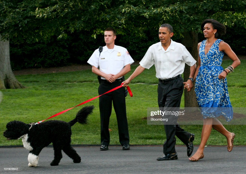 U.S. President <a gi-track='captionPersonalityLinkClicked' href=/galleries/search?phrase=Barack+Obama&family=editorial&specificpeople=203260 ng-click='$event.stopPropagation()'>Barack Obama</a>, center, and First lady <a gi-track='captionPersonalityLinkClicked' href=/galleries/search?phrase=Michelle+Obama&family=editorial&specificpeople=2528864 ng-click='$event.stopPropagation()'>Michelle Obama</a> walk their pet dog Bo to a picnic for members of Congress on the South Lawn of the White House, in Washington D.C., U.S., on Tuesday , June 8, 2010. The White House's annual congressional picnic event featured foods from regions across the country for a 'Tastes of the States' theme. Photographer: Gary Fabiano/Pool via Bloomberg