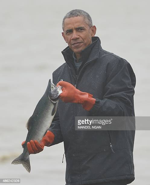 US President Barack Obama holds a silver salmon while meeting with fishermen on Kanakanak Beach in Dillingham Alaska on September 2 2015 AFP...