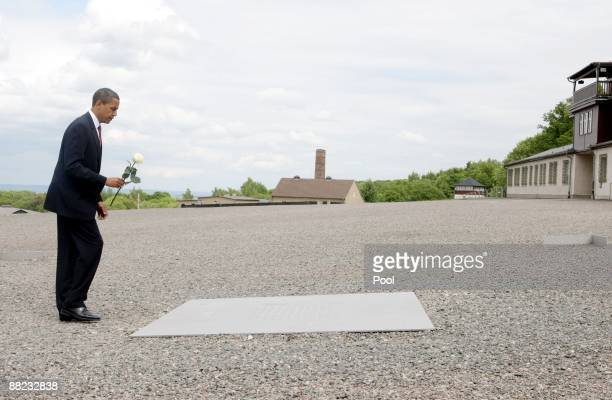 S President Barack Obama lays down a white rose on a memorial board at the former Buchenwald concentration camp on June 5 2009 near Weimar Germany...