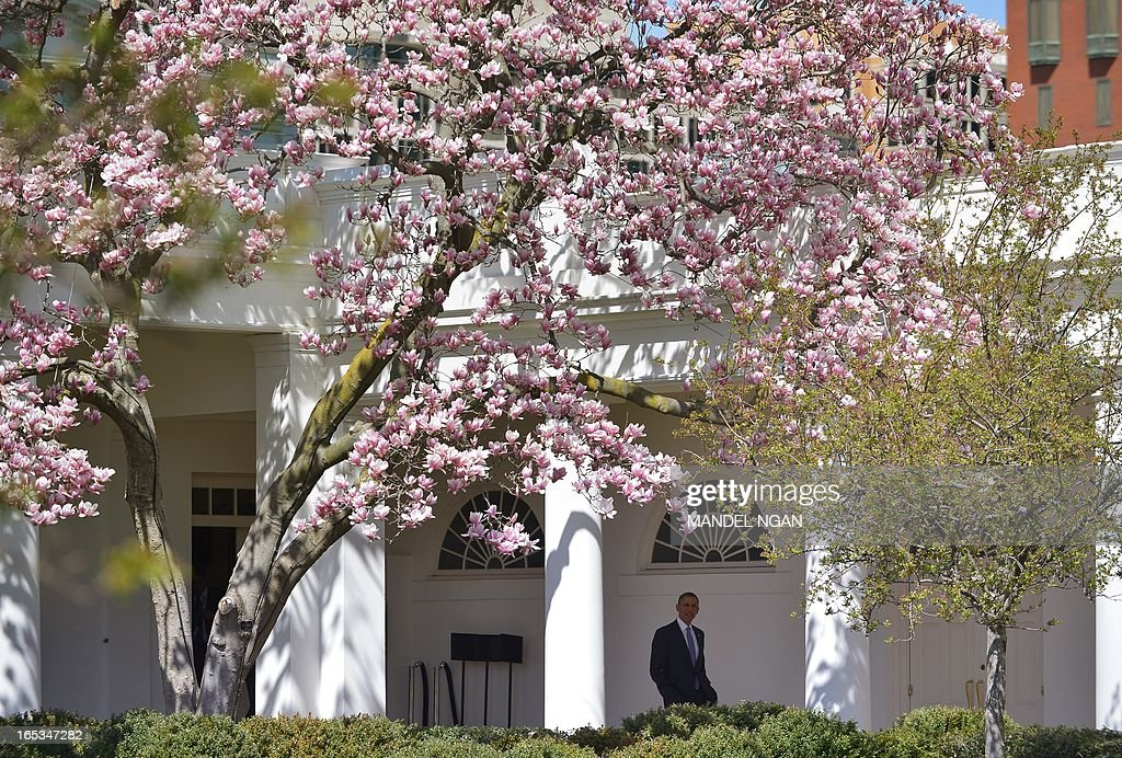 US President Barack Obama makes his way throught the Colonnade before boarding Marine One April 3,2013 on the South Lawn of the White House in Washington, DC. Obama was headed for visits to Colorado and California. AFP PHOTO/Mandel NGAN