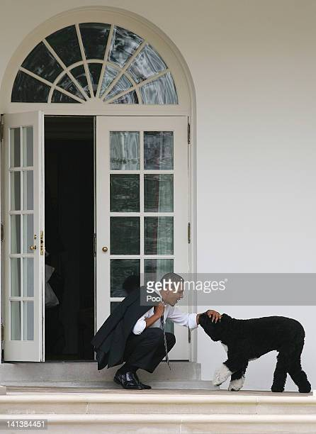 S President Barack Obama pets his dog Bo outside the Oval Office of the White House March 15 2012 in Washington DC Obama spoke today at Prince...