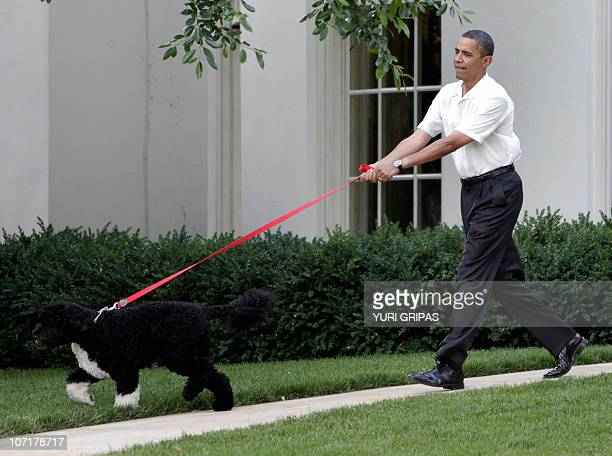 US President Barack Obama walks the first family's dog as he arrives at the Congressional Picnic on the South Lawn of the White House in Washington...