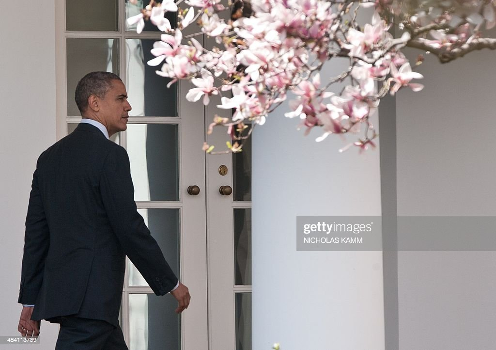 US President Barack Obama walks through the colonnade at the White House in Washington on April 11, 2014 before departing for New York to deliver a speech on voting rights. AFP PHOTO/Nicholas KAMM