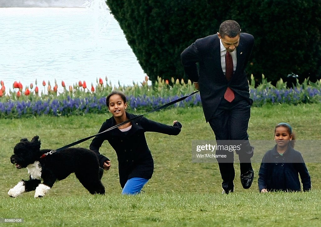 What Breed Of Dog Does President Obama Have