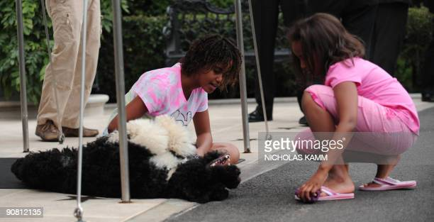US President Barack Obama's daughters Sasha and Malia play with the family's pet dog Bo as they wait for the Marine One presidential helicopter to...