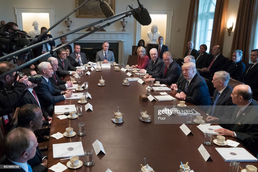 President Donald Trump (3-R) holds a meeting with members of his cabinet in the Cabinet Room of the White House on March 13, 2017 in Washington, DC. This was the first official meeting of Trump's cabinet.