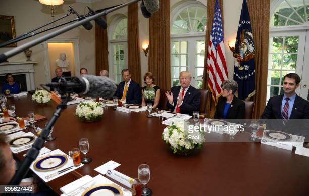 President Donald Trump hosts a working lunch with members of Congress including Sen Tom Cotton Sen Joni Ernst and White House Director of Legislative...