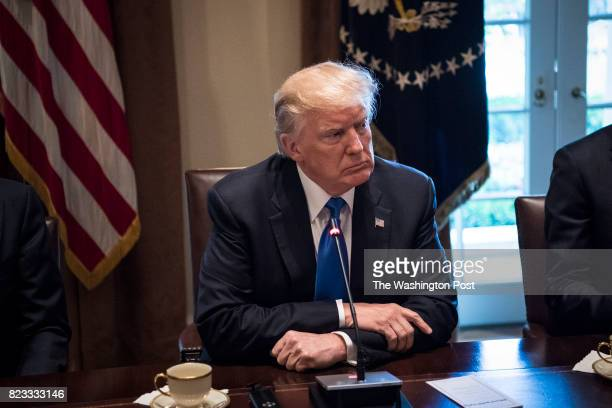 President Donald Trump participates in a meeting with Lebanese Prime Minister Saad Hariri in the Cabinet Room at the White House in Washington DC on...